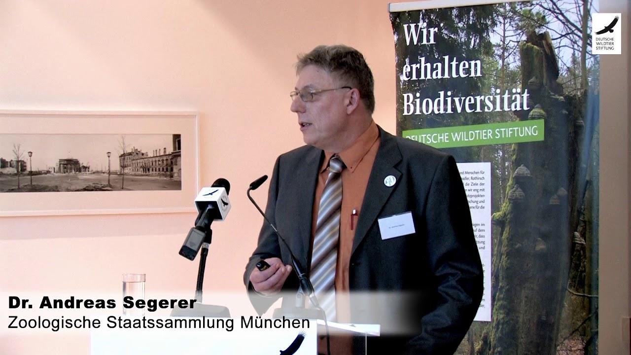 Schmetterlingssterben – Dr. Andreas H. Segerer beim Expertenforum 2017